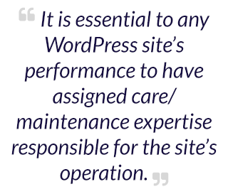 It is essential to any WordPress site's performance to have assigned care/maintenance expertise responsible for the site's operation.